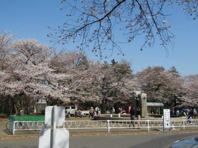 津田山噴水広場前.jpg