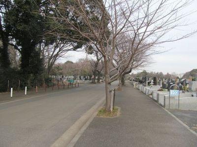 1月25日津田山風景.jpg