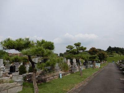 27日津田山墓地.jpg